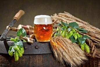 обоя еда, напитки,  пиво, бочка, хмель, пена, пиво, бокал