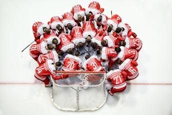 обоя спорт, хоккей, хокей, игроки, команд