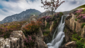 обоя природа, водопады, река, водопад
