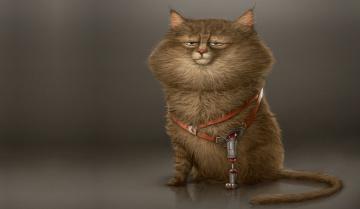 обоя рисованное, животные,  коты, кот, характер, настроение, лапа, минимализм, кошак, арт, протез, alexandre, blain