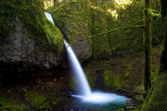 Картинка природа водопады орегон деревья сша река водопад