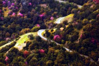 обоя природа, дороги, панорама, деревья, дорога, серпантин
