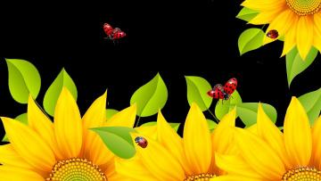 обоя векторная графика, цветы , flowers, фон, насекомые, подсолнухи