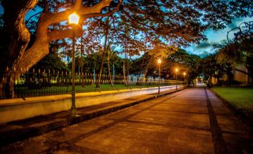 обоя природа, парк, деревья, фонари, аллея, ночь