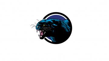 Картинка рисованное минимализм пасть клыки рык морда пантера