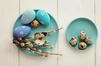 обоя праздничные, пасха, бабочка, яйцо, верба, блюдце