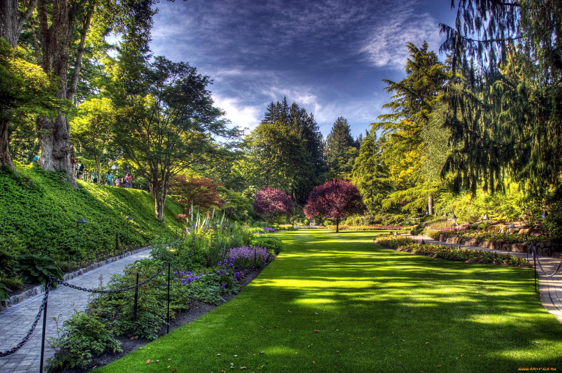 луг сад дворик трава  № 2691557 бесплатно