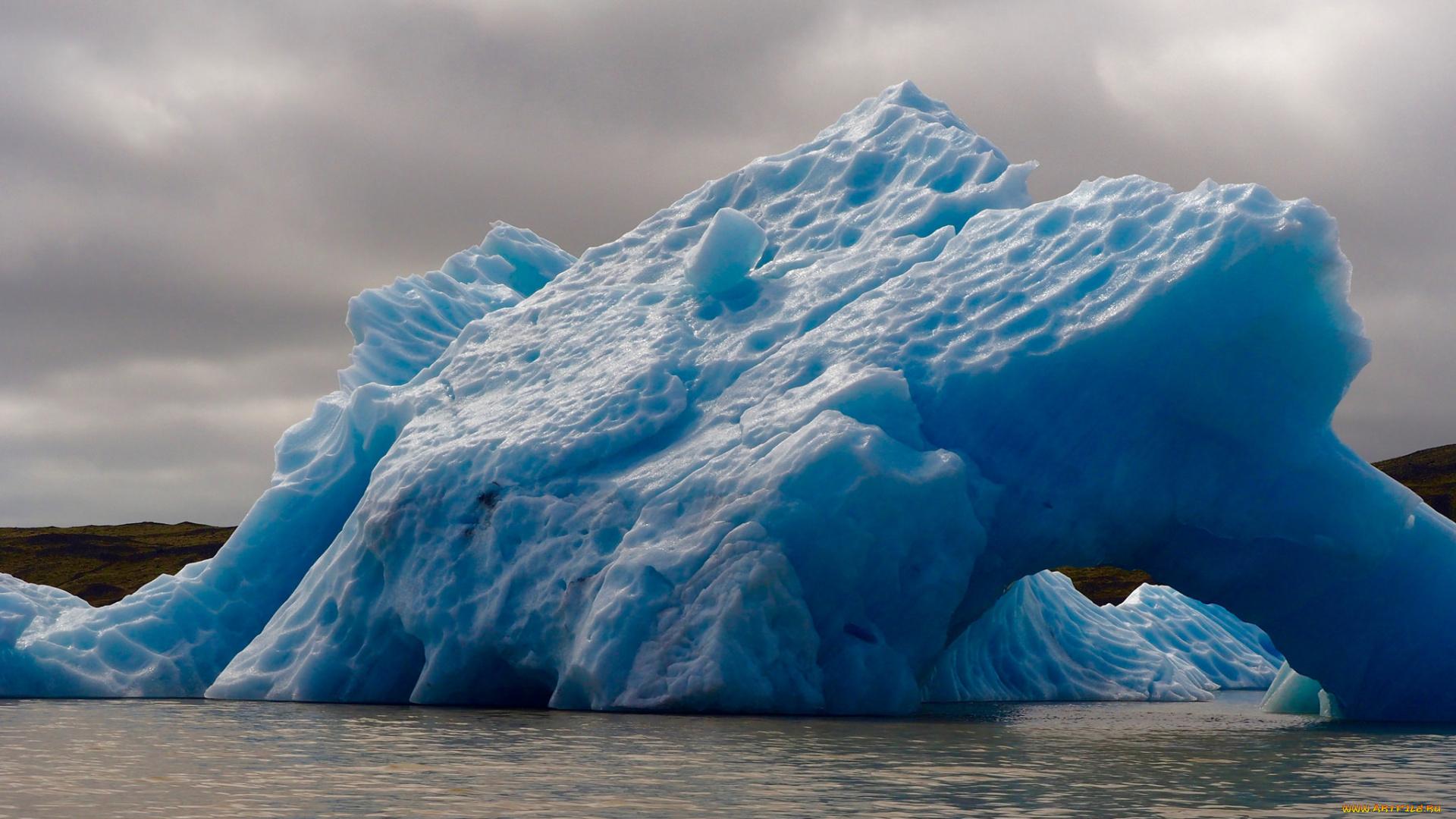 ледник айсберг цветы скачать