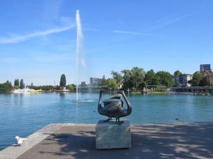 обоя города, - памятники,  скульптуры,  арт-объекты, гуси