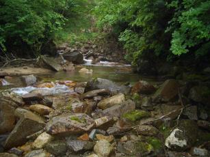 Картинка природа реки озера река камни лес