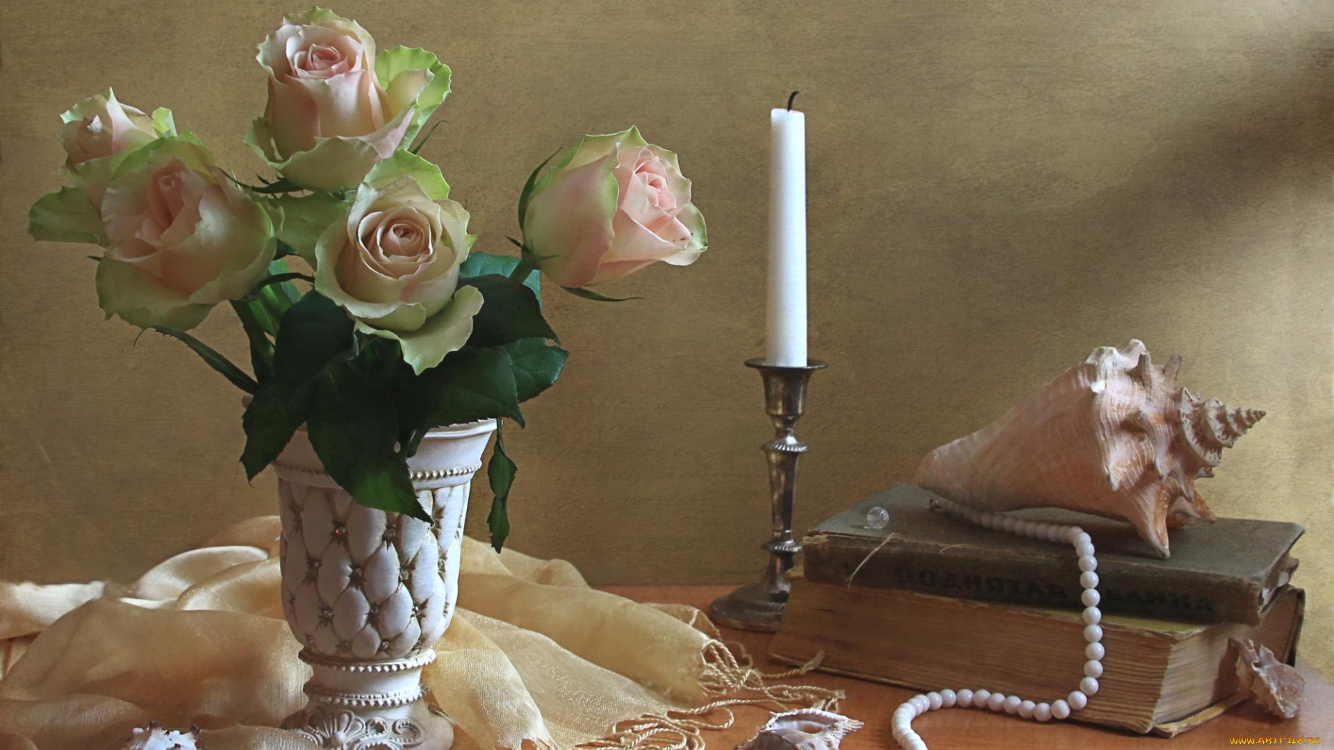 книга цветы роза свеча book flowers rose candle онлайн