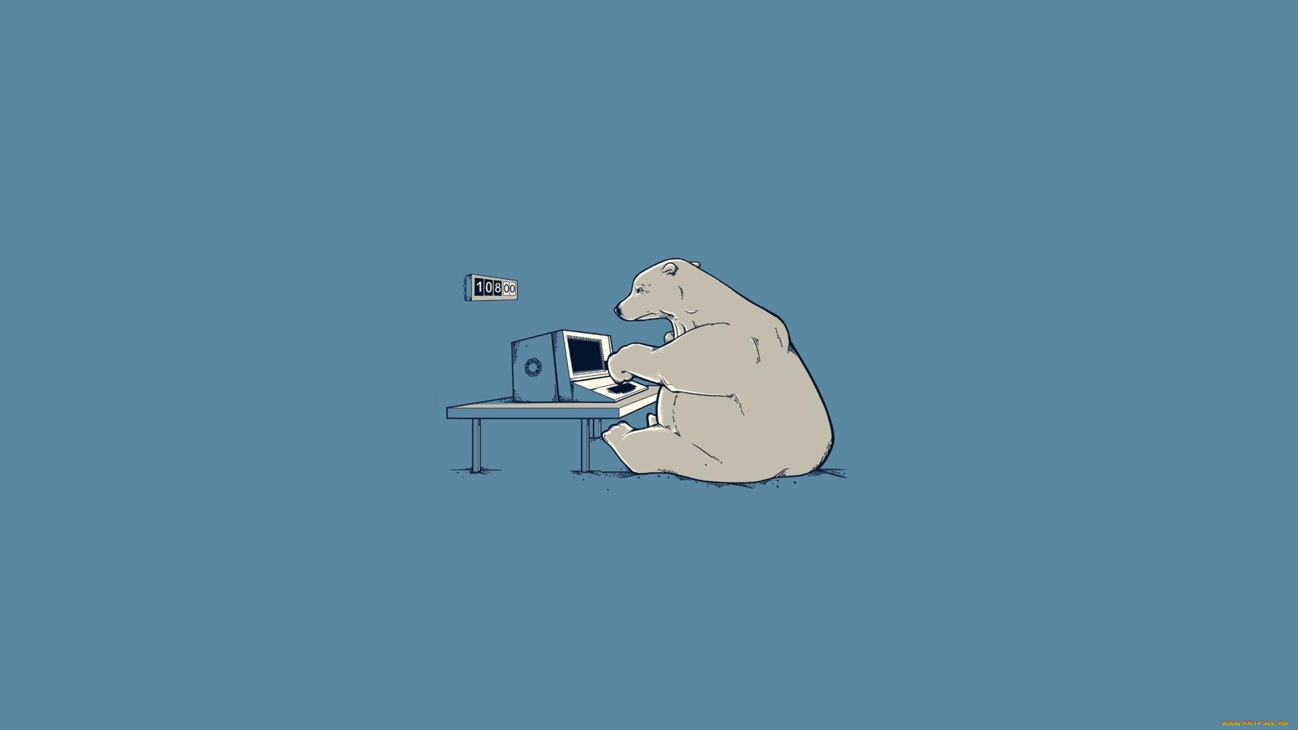 Медведь картинка минимализм вам магазины
