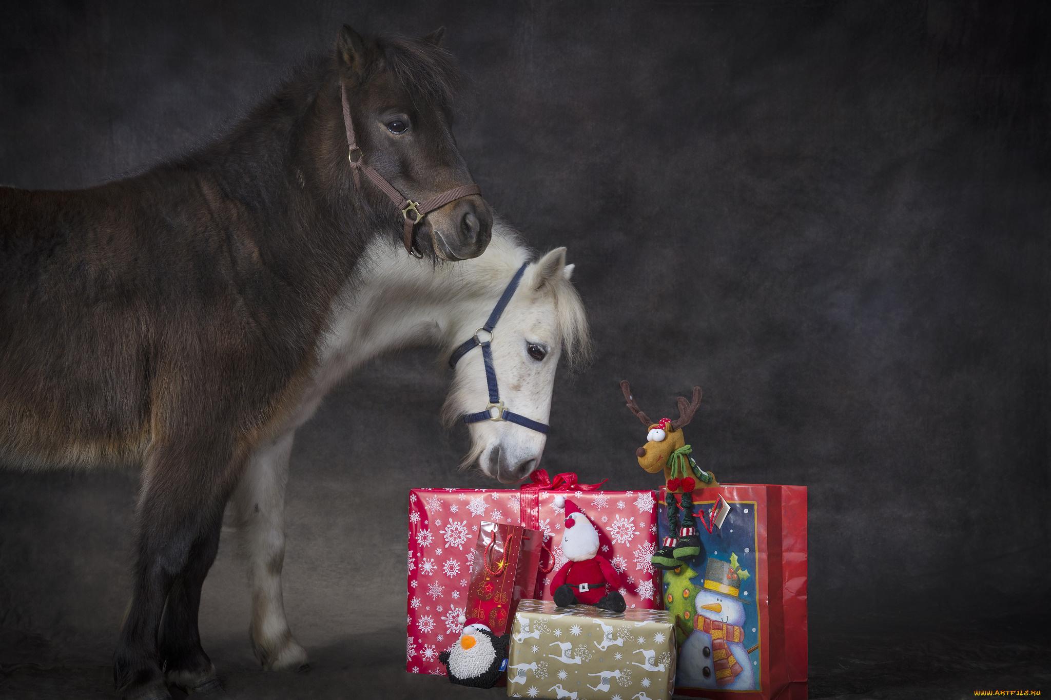 лошадка с подарками картинка целом получилась