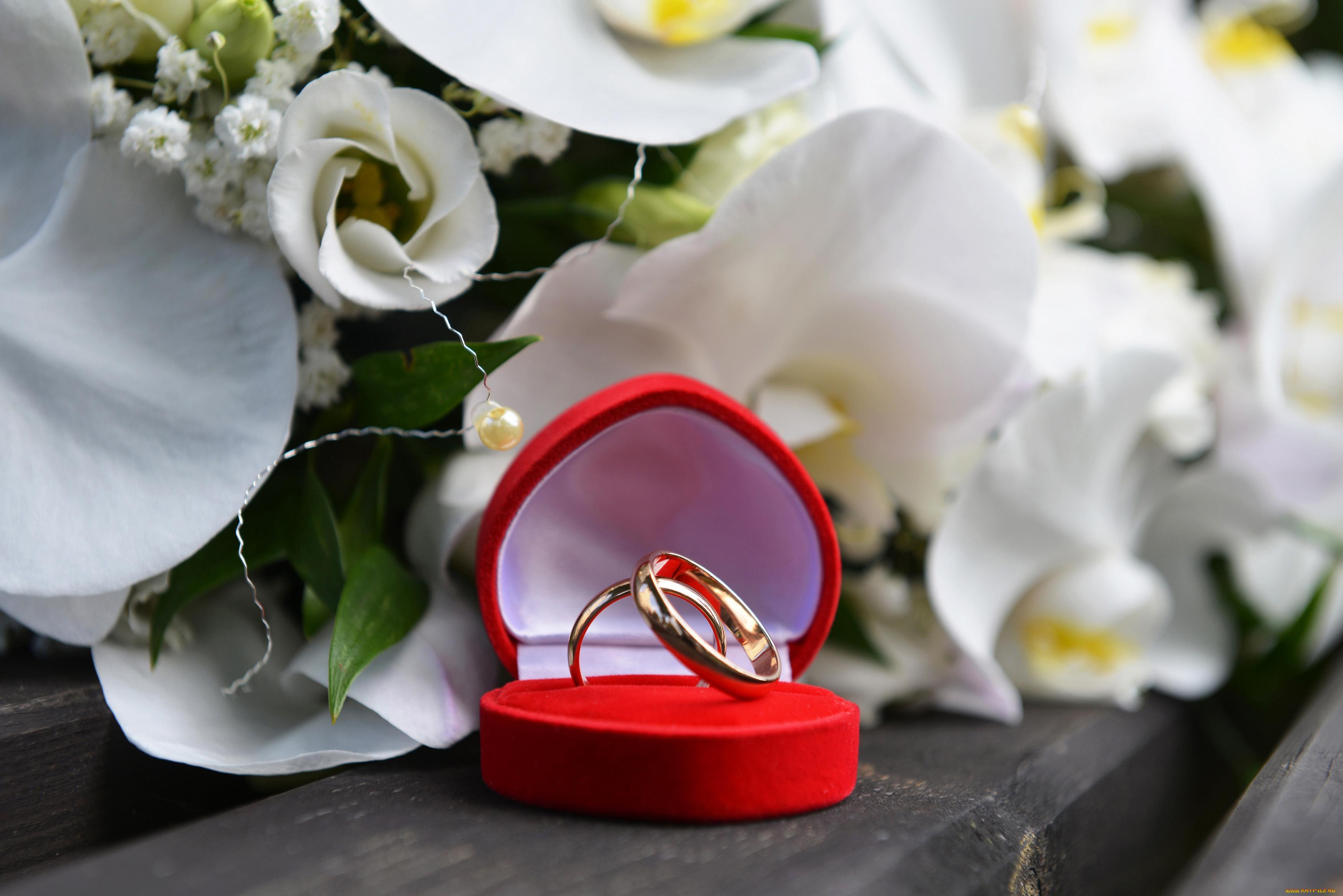 Открытки с днем свадьбы обручальные кольца