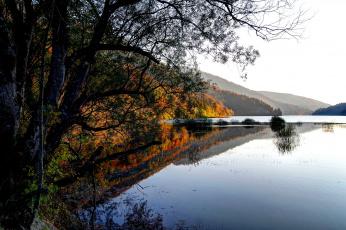 Картинка австрия природа реки озера река берег