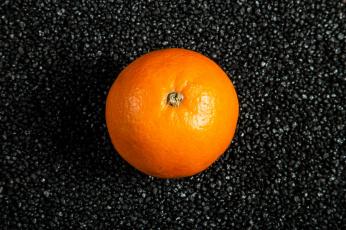 обоя еда, цитрусы, апельсин