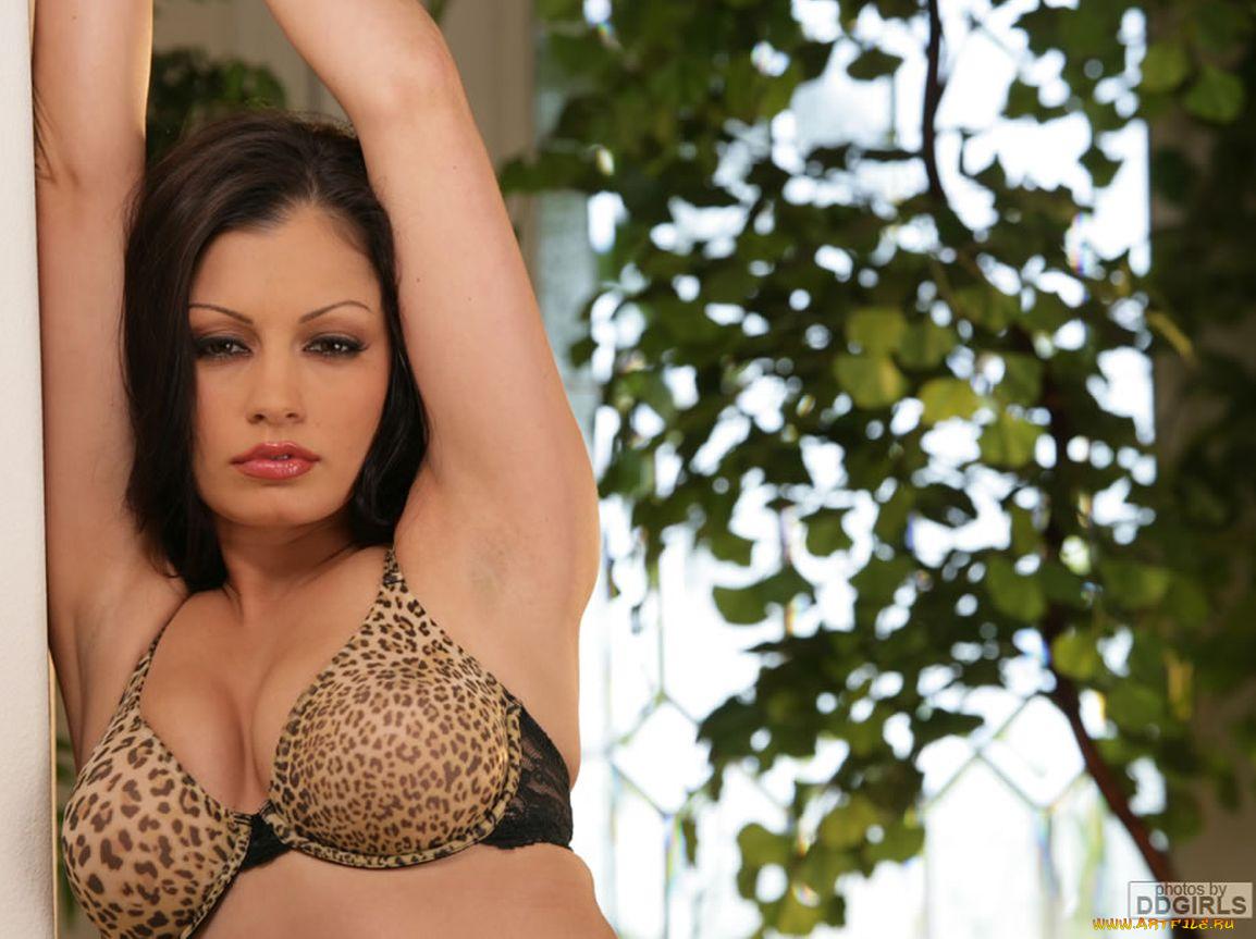 Фото ариа джовани, Aria Giovanni - все порно и секс фото модели 16 фотография