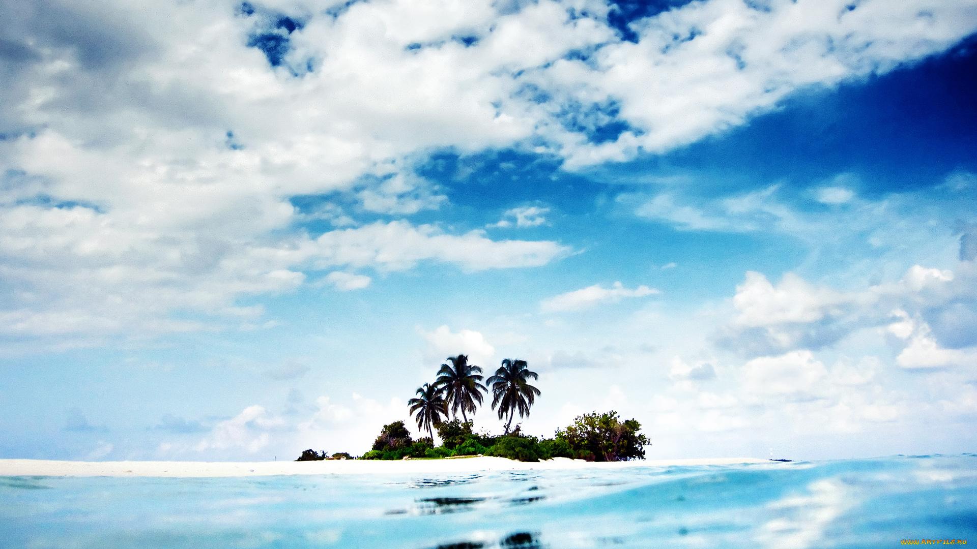 природа пальмы остров море подборки