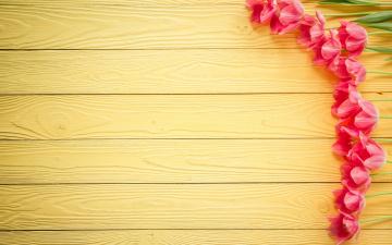 обоя праздничные, международный женский день - 8 марта, wood, love, heart, тюльпаны, pink, romantic, розовые, цветы, tulips, 8, марта