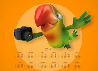 обоя календари, рисованные,  векторная графика, фотоаппарат, попугай