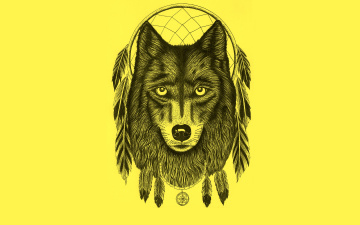 обоя рисованное, минимализм, dream, catcher, волк, перья, ловец, снов, dreamcatcher, wolf, светлый, фон