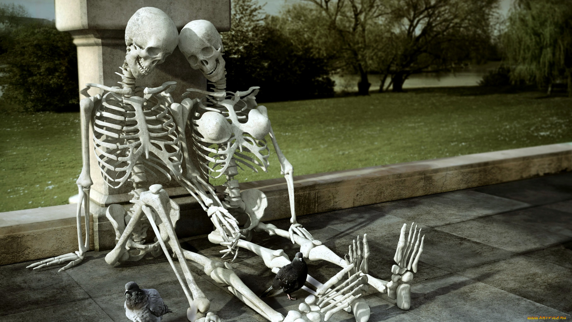 Смешные картинки со скелетами, работу картинки