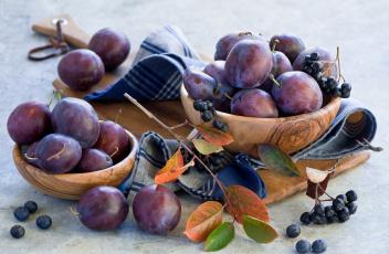 Картинка еда персики +сливы +абрикосы сливы фрукты листья посуда осень натюрморт
