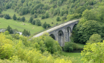 обоя города, - мосты, речка, деревья, луга, овцы, виадук, мост