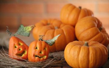 тыква Хэллоуин фон без смс