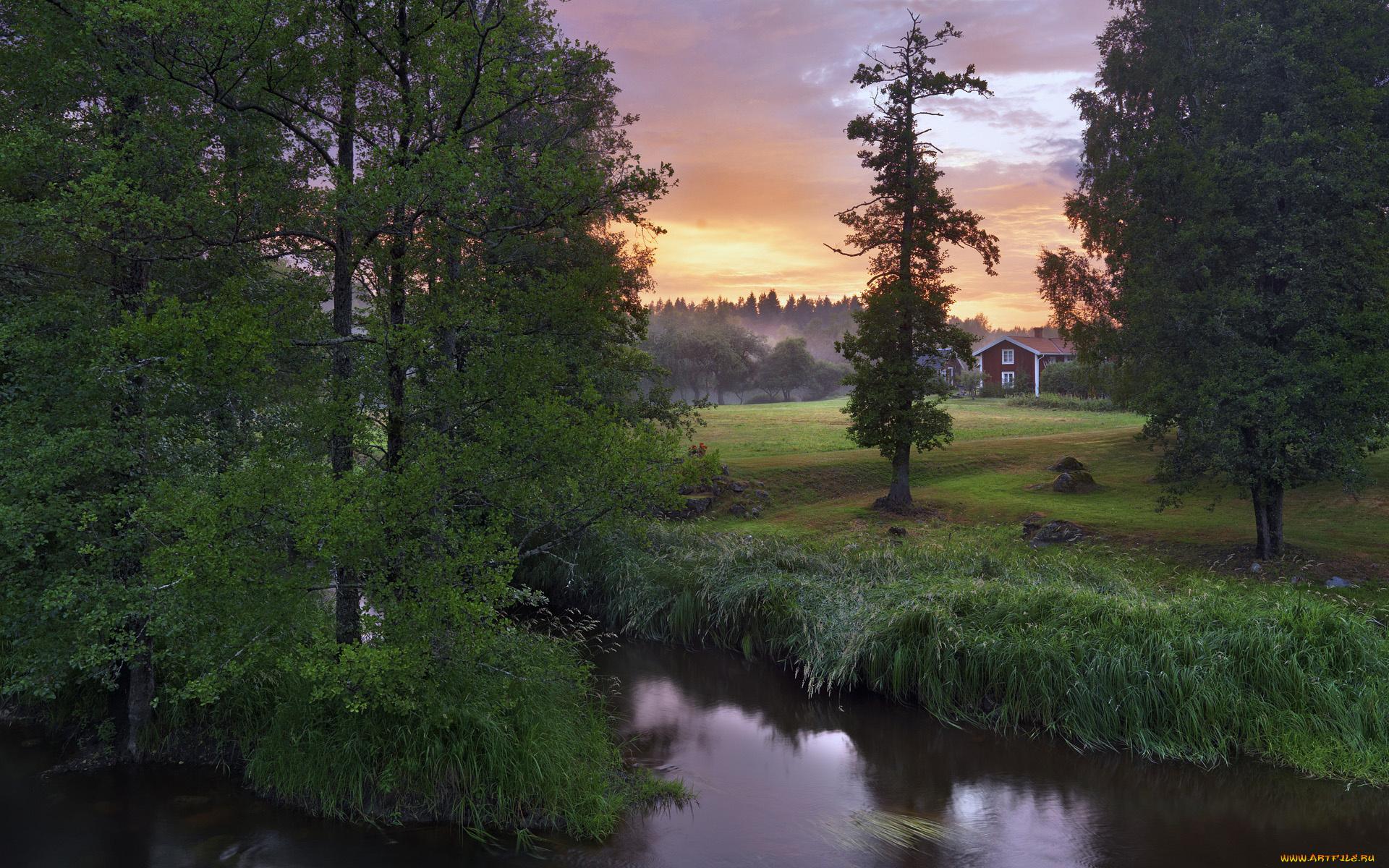 речка дерево зелень вечер туман  № 452968 бесплатно