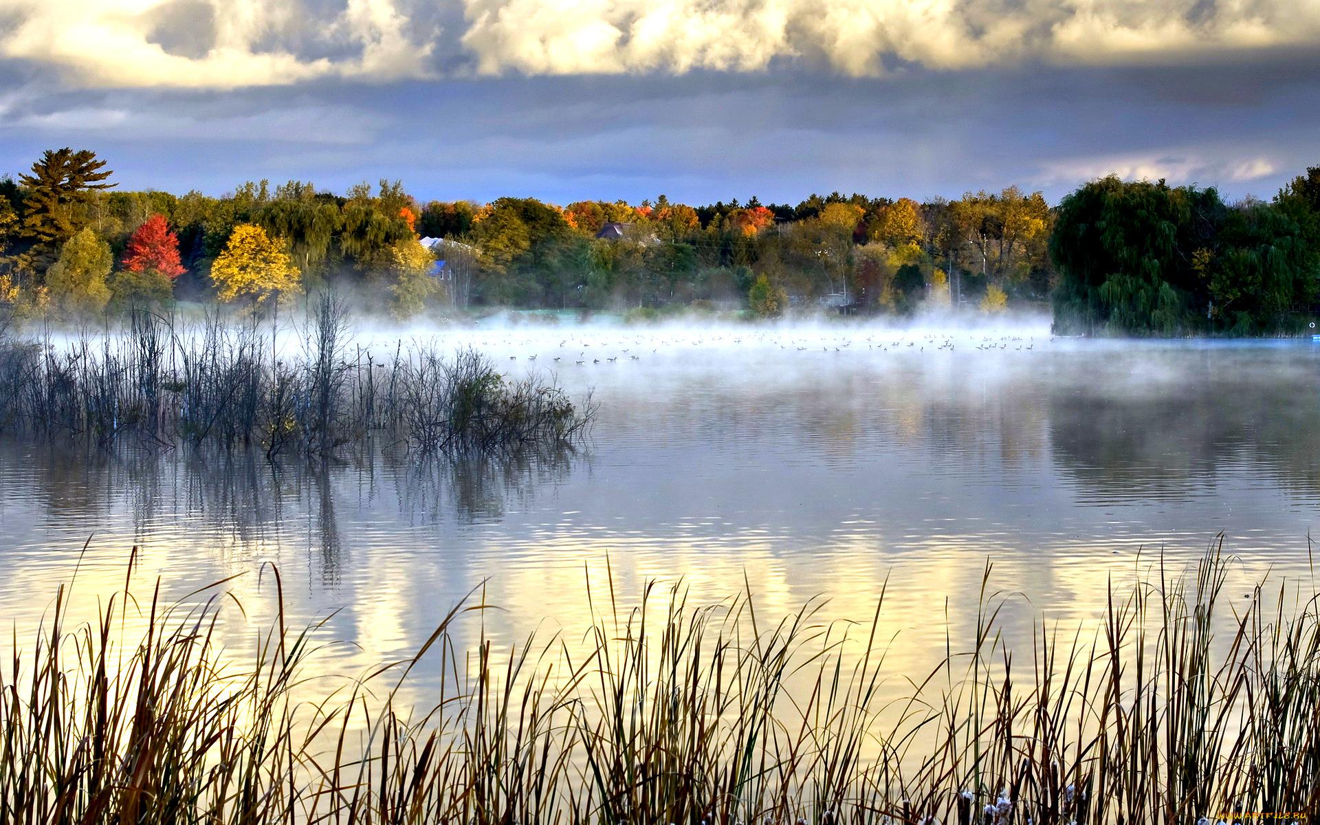Туман над лесной речкой  № 636789 загрузить