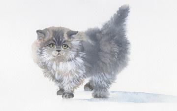 Картинка рисованное животные +коты акварель живопись пушистый серый котенок