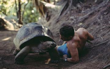 Картинка мужчины -+unsort черепаха парень