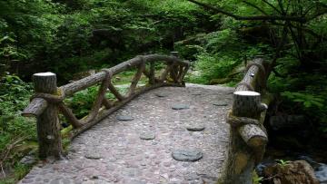 Картинка wooden bridge природа дороги мост дорога