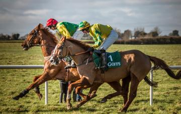 обоя спорт, конный спорт, наездники, лошади, трава, жокеи
