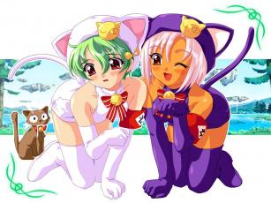Картинка аниме animals