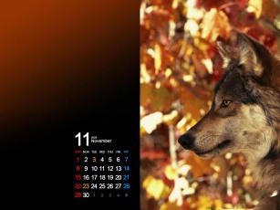 обоя календари, животные