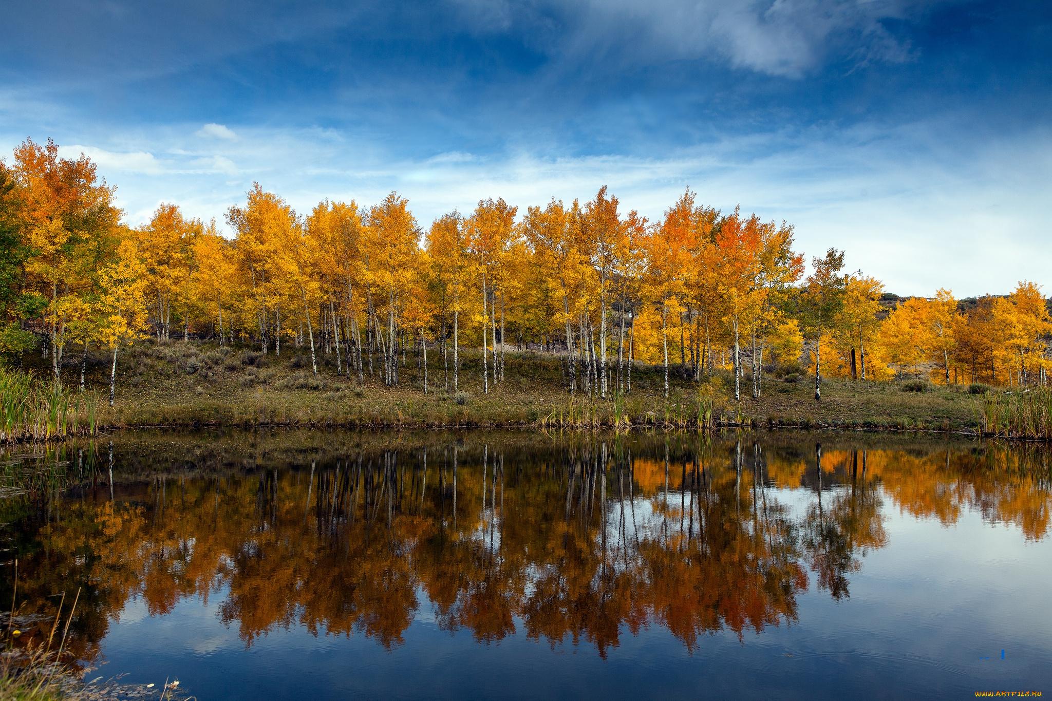 природа озеро деревья небо оссень  № 2536021 без смс