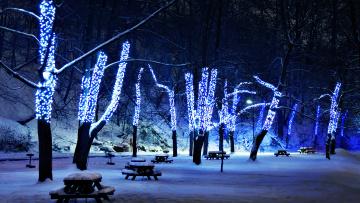 Картинка праздничные новогодние+пейзажи деревья аллея зима парк гирлянды иллюминация столики